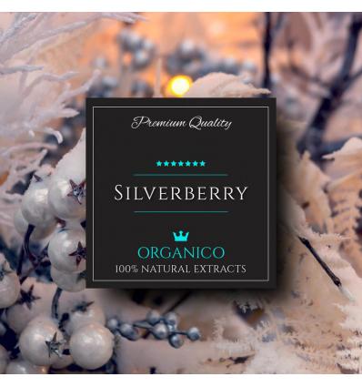 SILVERBERRY 40ML